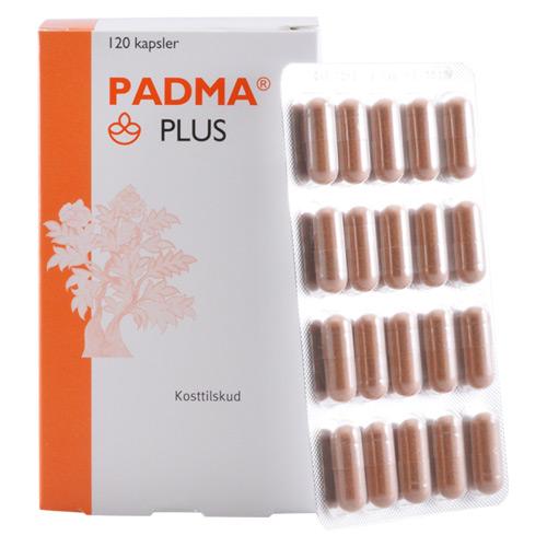 Padma Plus (120 kap)