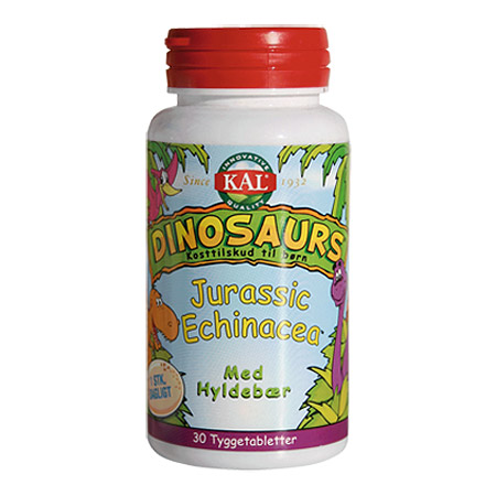 Image of DinoSaursEchinaceatyggebørn (30tab)