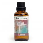 Rebalance (50ml)