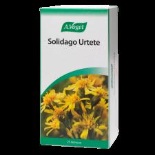 Solidago Urtete (50 gr, 25 breve)